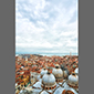 image of rooftop view of Venice, Italy