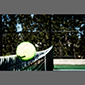image of tennis ball and net